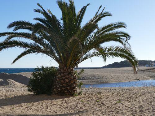 Wieder in Spanien